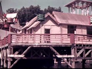 [Home Movies: Medicus Collection: Paris International Exposition, 1937] on DVD