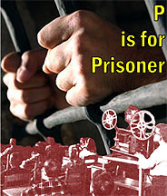 P is for Prisoner DVD