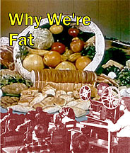 Why We're Fat on DVD