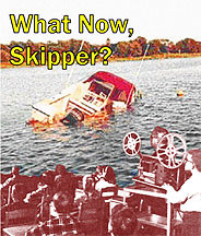 What Now, Skipper? DVD