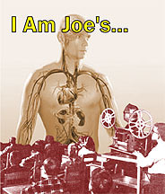 I Am Joe's DVD