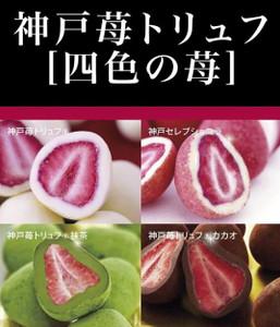 〈Frantz〉[四色之莓]草莓松露朱古力套裝