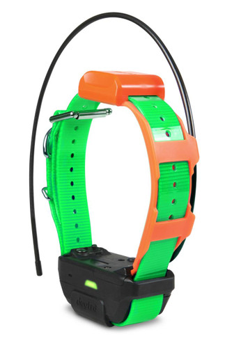 Dogtra Pathfinder Green Collar Only - 744622080063