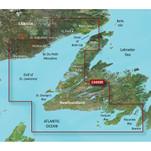 Garmin BlueChart g3 Vision HD - VCA008R - Newfoundland West - microSD\/SD