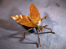 Iron Fly Garden Sculpture or Paperweight Hand made in Baja California, Mexico