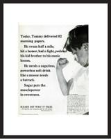 LIFE Magazine - Framed Original Ad - 1964 Sugar Ad
