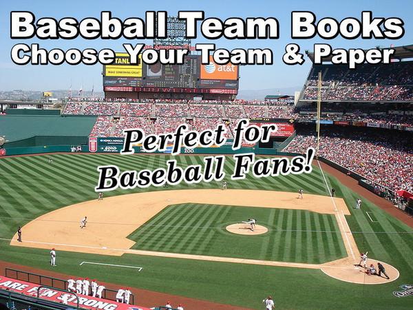 Baseball Team History Books