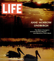 LIFE Magazine - February 28, 1969 - The Moon Voyagers