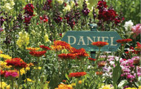 Flower Bed Personalized Jigsaw Puzzle