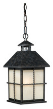 "Vaxcel T0030 Savannah 8"" Outdoor Pendant"