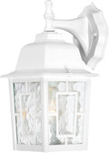 "NUVO Lighting 60/4921 Banyan 1 Light 12"" Outdoor Wall with Clear Water Glass"