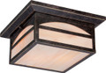 NUVO Lighting 60/5656 Canyon 2 Light Outdoor Flushmount Fixture with Honey Stained Glass