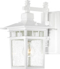 "NUVO Lighting 60/4951 Cove Neck 1 Light 12"" Outdoor Lantern with Clear Seeded Glass"