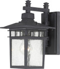 "NUVO Lighting 60/4953 Cove Neck 1 Light 12"" Outdoor Lantern with Clear Seeded Glass"