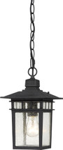 "NUVO Lighting 60/4956 Cove Neck 1 Light 12"" Outdoor Hang with Clear Seeded Glass"