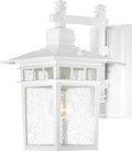 "NUVO Lighting 60/4957 Cove Neck 1 Light 14"" Outdoor Lantern with Clear Seeded Glass"