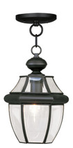 LIVEX Lighting 2152-04 Monterey Outdoor Chain Lantern in Black (1 Light)