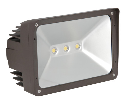 Luminance F7395-66 LED Flood Light