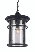 "13.75"" Outdoor Black Transitional Hanging Lantern"