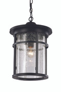 "16"" Outdoor Black Transitional Hanging Lantern"