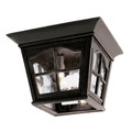 "Briarwood 8"" Outdoor Black Rustic Flushmount Lantern with Traditional Scalloped Window Panes"