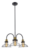 "Jackson 24"" Indoor Rubbed Oil Bronze Industrial Pendant with Vintage Style Clear Glass Shade"