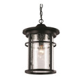 "Trans Globe Lighting 40385 RT 13.75"" Outdoor Rust Transitional Hanging Lantern(Shown in Black Finish)"