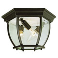 "Trans Globe Lighting 4907 BG 6.5"" Outdoor Black Gold Traditional Flushmount Lantern"