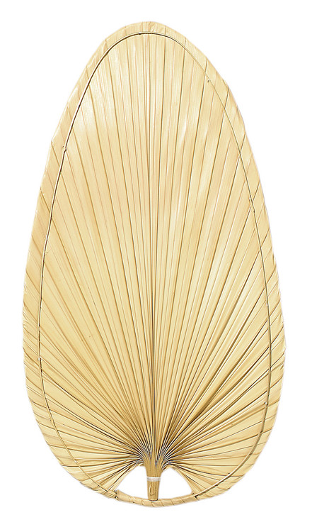 """Fanimation CAISP4 22"""" Caruso Narrow Oval Blade in Natural Palm (Set of 10)"""