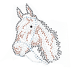 Ovrs1656  - Small Horse Head