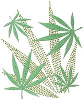 Ovrg002 - Cannabis Leaves