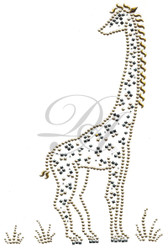 Ovrp10 - Giraffe in Grass