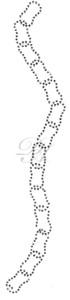 Ovrs2209B - Set of Chains