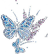 Ovrs425C - Butterfly with small butterfly
