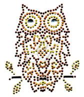 Ovrs4961s - Small Brown Owl