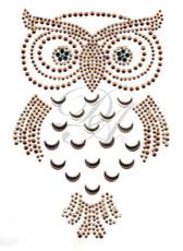 Ovrs4964 - Moon Owl