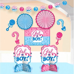 Girl or Boy? Gender Reveal Baby Shower Room Decorating Kit