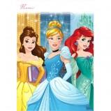 Disney Princess Dream Big Folded Loot Bag 8 pack