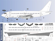 1/100 Scale Decal Detail Sheet 737-200