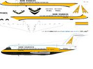 1/144 Scale Decal Air Anglia F-28