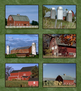 SIX RED BARNS QUILT PANEL