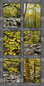 SMOKY MOUNTAINS NP FALL SIX IMAGE QUILT PANEL