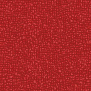True Red Bedrock 108in Quilt Back by Windham Fabrics