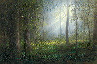 Sacred Grove 18x24  LE Signed & Numbered - Giclee Canvas