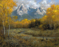 Golden View 18 x 22 LE Signed & Numbered - Litho Print