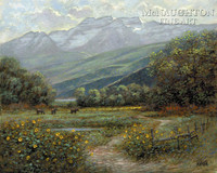 Timpanogos Meadow 11 x 14 LE Signed & Numbered - Giclee Canvas