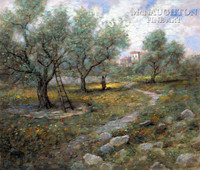Olive Orchard 16x20 LE Signed & Numbered - Giclee Canvas