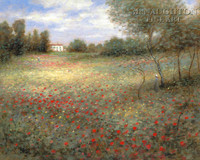 Field of Colors 24x36 LE Signed & Numbered - Giclee Canvas