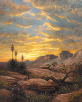 Zion Sunset 20x24 LE Signed & Numbered - Giclee Canvas