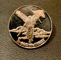 Angel of Liberty Pin